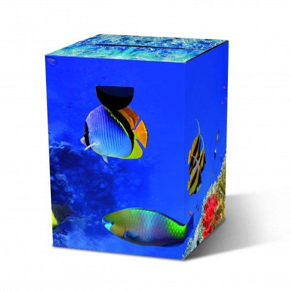 Remember - Papphocker 'Aquarium'